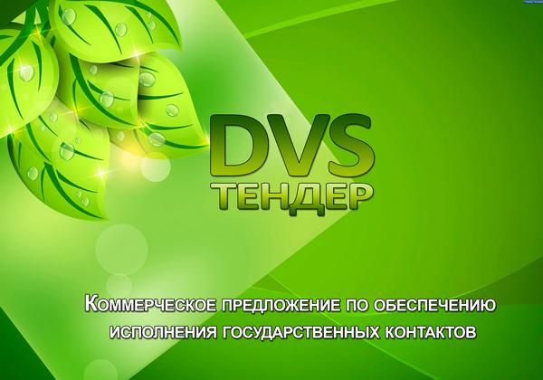 МК DVS 01